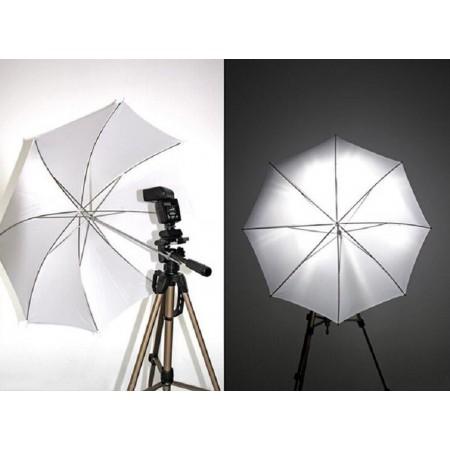 Monitor HP 19 inch